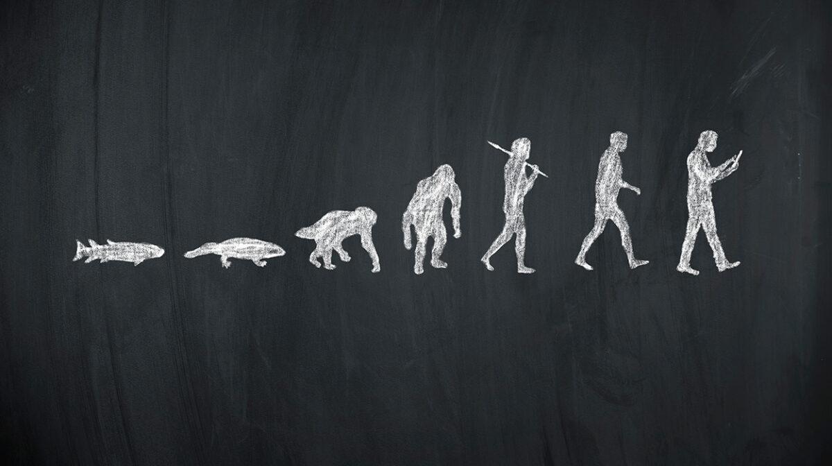 Seminar Evolution