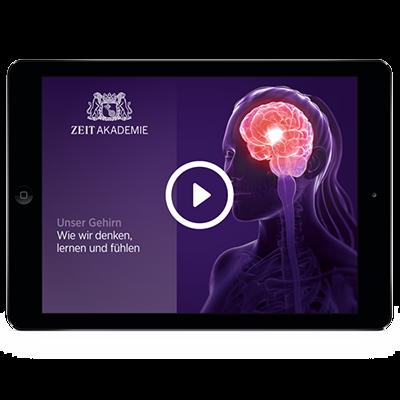 »Unser Gehirn«-Seminar Online Seminar