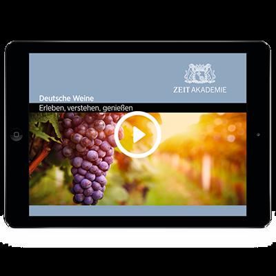 »Wein«-Seminar Online Seminar
